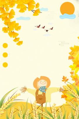 오렌지 은행 나무 식물 장식 배경 주황색 은행 나무 식물 질감 라이스 필드 배경 음식 해바라기 , 나무, 식물, 질감 배경 이미지