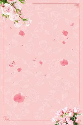 橙色浪漫簡約520 , 浪漫, 玫瑰, 花背景 背景圖片