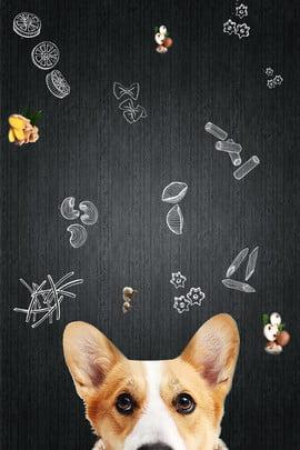 寵物動物概念擬人化 , 生活, 狗, 氣球 背景圖片