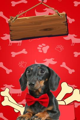 pet dog graffiti cartoon , Ad, Pet Background, Dog Background Background image