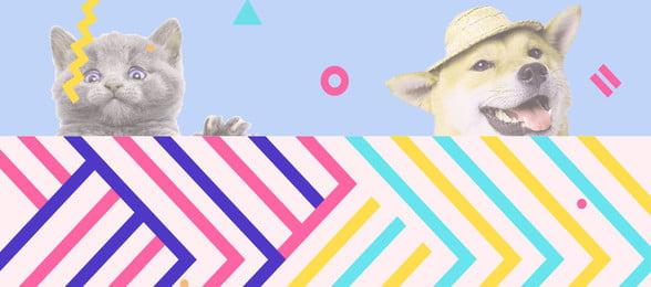 Géométrie pour animaux de compagnie Memphis Banner Poster Background Animal de compagnie La Compagnie La Géométrie Image De Fond