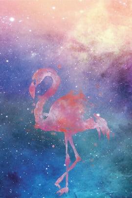 Hình nền chim hồng hạc đẹp Hình ảnh bầu Voi Nền Trời Hình Nền
