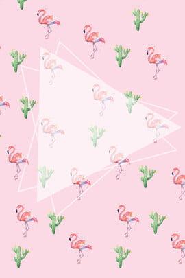 fundo de anúncio flamingo fresco rosa pink fresco flamingo publicidade plano de fundo pink fresco flamingo publicidade plano , Pink, Fresco, Flamingo Imagem de fundo