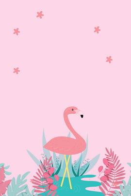 Розовый свежий милый фламинго рекламный фон розовый пресная прекрасный Фламинго реклама фон розовый пресная прекрасный Фламинго реклама фон , Розовый свежий милый фламинго рекламный фон, розовый, пресная Фоновый рисунок