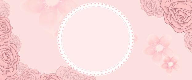 pink rose banner poster nền màu hồng hoa hồng biểu, Hồng, Hoa, Phích Ảnh nền