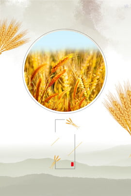 round frame wheat ears chinese style solar background , Hawthorn, Texture, Yellow Background image