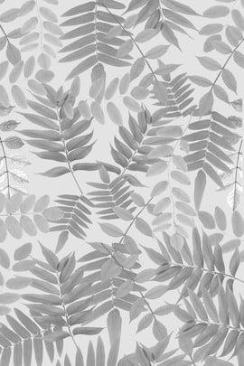 Mẫu thảm nghệ thuật đơn giản màu đen và trắng dưới cùng có thể được sử dụng trực tiếp Đơn giản Đen và Trắng Lá Bóng Hình Nền