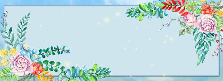 नए वॉटर कलर फूल बॉर्डर बैकग्राउंड पर स्प्रिंग सरल ताज़ा फूल पौधा वसंत में नया कॉस्मेटिक, शुरुआत, पानी, के पृष्ठभूमि छवि