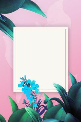 ลมสีเขียวปลูกดอกไม้โปสเตอร์พื้นหลังสีชมพู ง่าย ขอบดอกไม้สีเขียว ขอบพืชสีเขียว พืชสีเขียว ดอกไม้ ดอกไม้สด ดอกไม้ ลมสีเขียวปลูกดอกไม้โปสเตอร์พื้นหลังสีชมพู ง่าย ขอบดอกไม้สีเขียว รูปภาพพื้นหลัง
