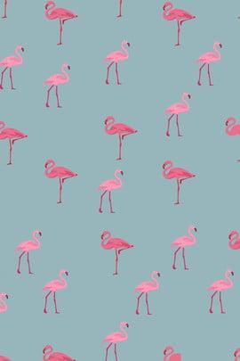teste padrão simples do papel de parede do flamingo da cópia simples impressão animal flamingo fresco literário papel de parede pink bonito feliz , Parede, Pink, Bonito Imagem de fundo