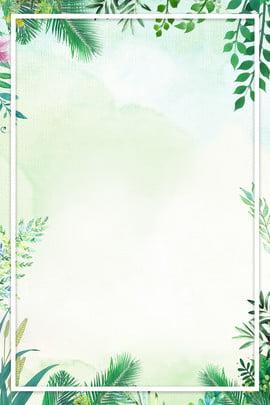 nền poster mùa hè mùa hè Đẹp hoa màu xanh lá nền , Mát, Hè, Hè Ảnh nền