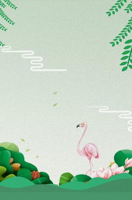 fundo de publicidade fresca de flamingo de verão verão flamingo fresco publicidade plano de fundo fundo , De, Verão, Flamingo Imagem de fundo