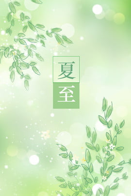 summer green leaves cool , Summer, Summer Solstice, Fresh Background image