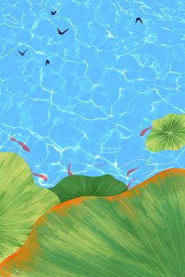 Summer Solstice Blue Lake Fresh Summer Fish Pond Quảng cáo Hạ chí Màu xanh Mặt Cảnh Nền Chí Hình Nền