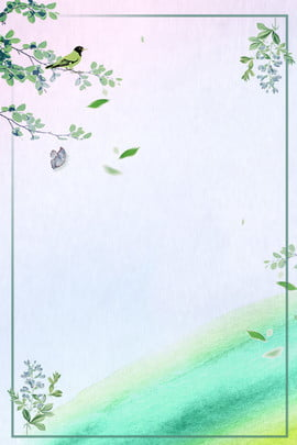 Plane Background Minimalist Hình Nền
