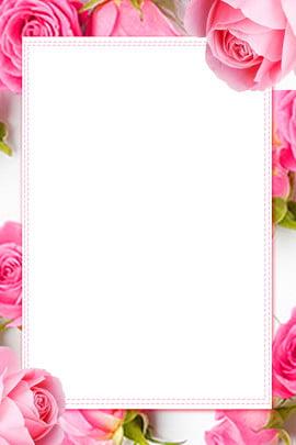 rosa rosa romântico festival de fundo tanabata rose romântico moda plano de fundo pink literário dia , Flor, Rosa, Tanabata Imagem de fundo