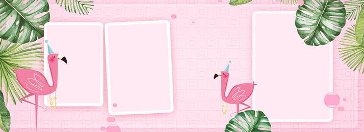 ピンクのins風バナーの背景 10代の心 ピンク フラミンゴ グリーンプラント イン風 額縁 漫画の手描き バナー, 10代の心, ピンク, フラミンゴ 背景画像