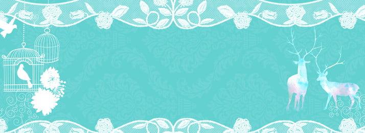cao cấp ren màu xanh bóng tiffany biểu ngữ nền màu xanh tiffany xanh ren bóng màu, Cao Cấp Ren Màu Xanh Bóng Tiffany Biểu Ngữ Nền Màu Xanh, Xanh, Bóng Ảnh nền