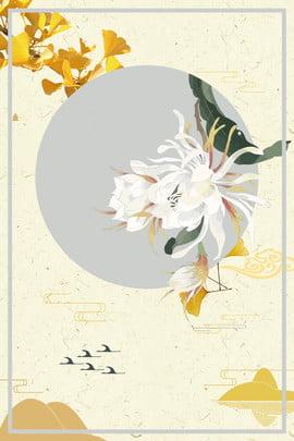 white flower chrysanthemum decoration , White Dew, Texture, Yellow Background image