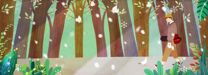 winter sunlight forest travel, Skateboard, Boy, Motion Background image