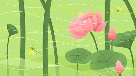 Tại lễ hội mùa hè vật liệu nền ao sen Hoa Sen Mùa Hình Nền