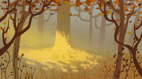 秋季森林陽光背景素材, 陽光, 森林, 樹林 背景圖片