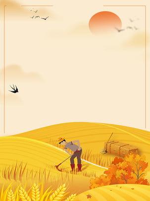 麦畑は秋が収穫され秋が収穫される , 豊作, 秋の収穫, 秋の色 背景画像