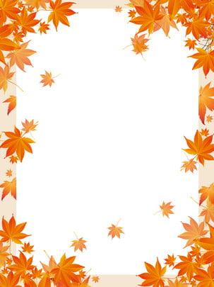 紅葉小さな澄んだ背景 , あき, カエデの葉, ゴールデンイエロー 背景画像