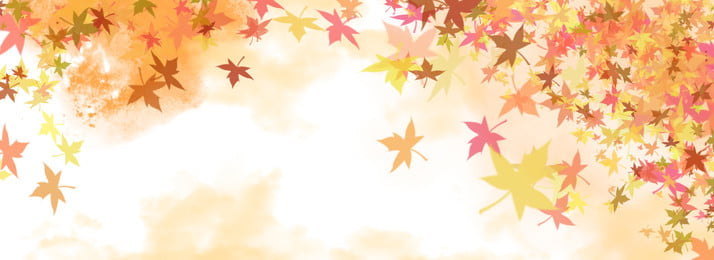 autumn maple leaves falling background, Autumn, Maple Leaf, Fallen Leaves Background image