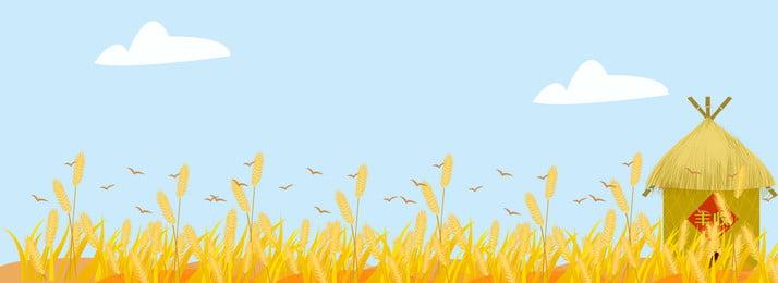 शरद ऋतु चावल की फसल पृष्ठभूमि, शरद ऋतु की फसल, चावल, अनाज पृष्ठभूमि छवि