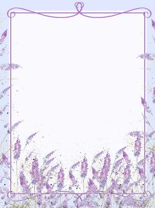 rõ ràng nền hoa oải hương mùa thu nhỏ , Nền, Rõ Ràng Nền Nhỏ, Nền Văn Nghệ Ảnh nền
