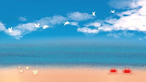 青い空の下でビーチシェルカニ風景, 青い空, ビーチ, シェル 背景画像