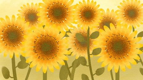 Chất liệu poster hoa hướng dương mùa thu đẹp Hoa Hướng Dương Hình Nền