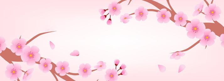 Piękna brzoskwiniowa tło źródłowa kartoteka Kreskówka Ładny Różowy Kwiat Kwiat wiśni Brzoskwiniowy kwiat Plakat Kreskówka Ładny Różowy Obraz Tła
