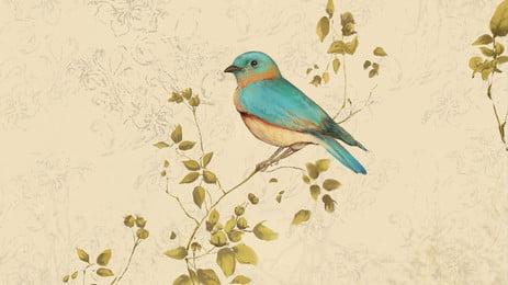 nền phim hoạt hình chim trên cành xanh, Bánh Tráng, Màu Xanh, Chi Nhánh Ảnh nền