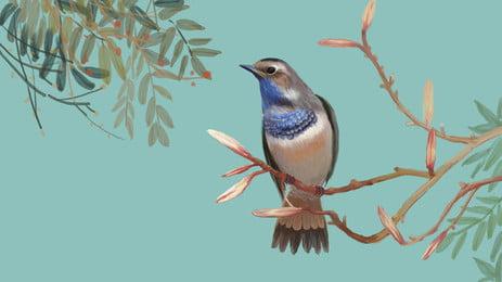 chim xanh nền hoạt hình cành, Hoạt Hình, Birdie, Cành Cây. Ảnh nền