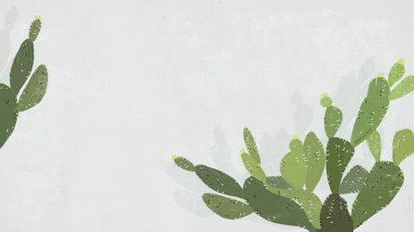 仙人掌植物插畫背景設計, 卡通, 手繪, 仙人掌背景 背景圖片