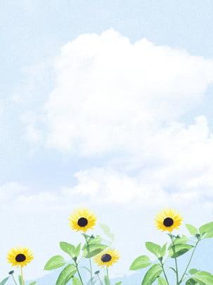 卡通手繪風向日葵海報背景 , 藍色, 唯美, 向日葵 背景圖片