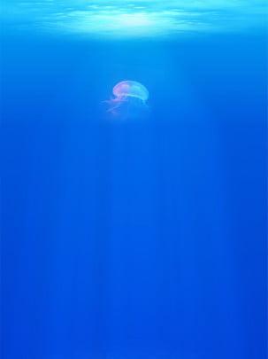 deep sea jellyfish summer blue gradient cool business background , Summer, Ocean, Blue Background image