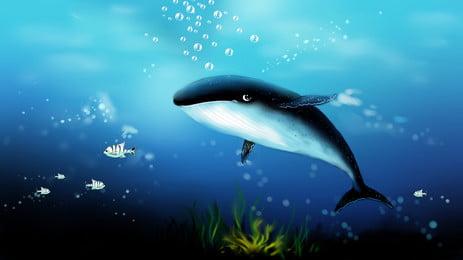 深海鯨魚插畫藍色背景圖, 深海背景, 海洋背景, 海底世界背景 背景圖片