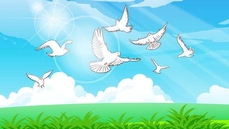 藍色天空下草地上飛翔的白鴿背景 藍色 天空 草地 飛翔 白鴿 背景 , 藍色天空下草地上飛翔的白鴿背景, 藍色, 天空 背景圖片