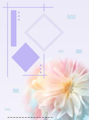 bé mới mẻ về hoa tiết hàn lộ nền , H5 Nền, Hình Học đa Giác, 唯美 Ảnh nền