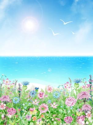 Hoa đối diện với tập tin nguồn nền biển Bầu trời xanh Mây Phép Đại Trang Hình Nền