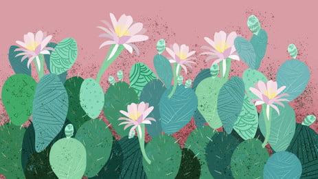 flowering succulent cactus green background element, Cactus, Green Background, Flower Background image