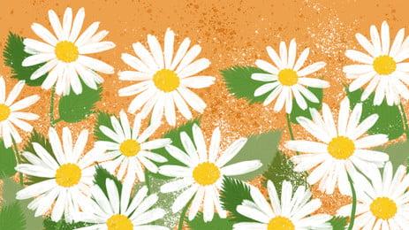hoa cúc nhỏ xinh đẹp quảng cáo nền, Nền Vàng, Nền Quảng Cáo, Tươi Ảnh nền