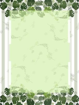 清新手繪綠色葉子簡約綠色系背景 手繪 清新 簡約背景圖庫
