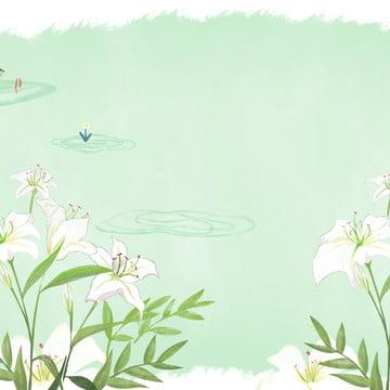 Hoa lily tươi Hoa Huệ Hoa Hình Nền