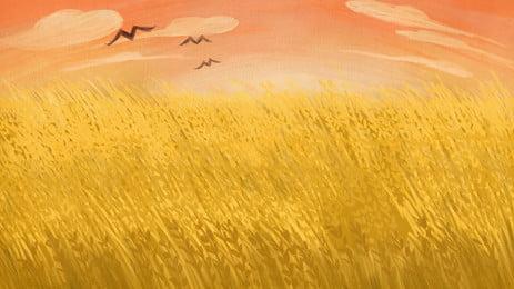 fresh sunshine wheat field advertising background, Advertising Background, Fresh, Plant Background image