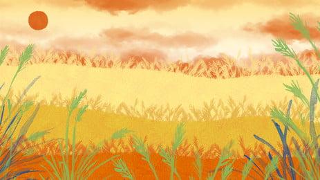 金光麥田廣告背景, 豐收, 廣告背景, 植物 背景圖片
