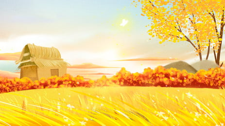 golden wheat field advertising background, Paddy, Advertising Background, Wheat Field Background image